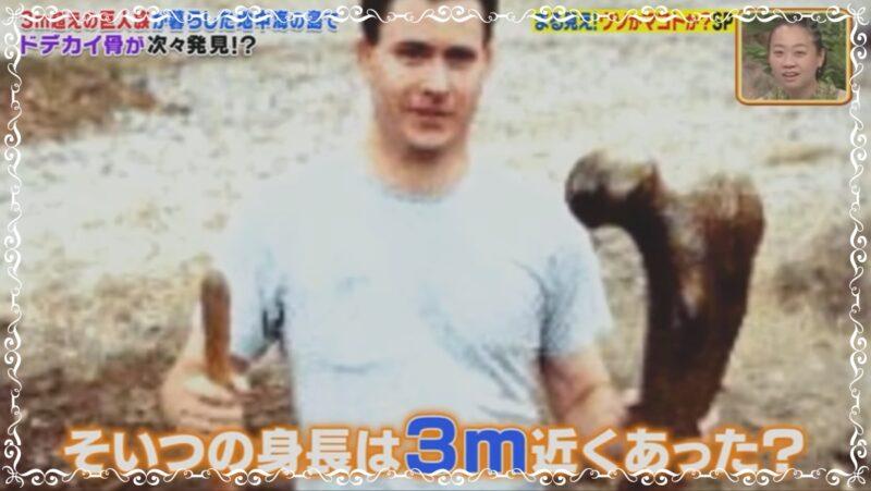 巨人の写真02