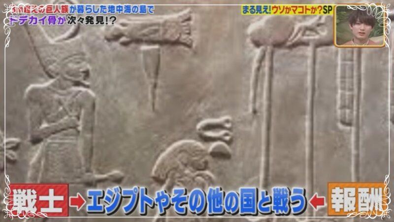 巨人の写真7